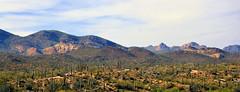 Apache Junction, Arizona, USA (Kelly - McLaughlin) Tags: arizona cactus usa horizon desert