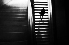 higher ground (Lamson*Nu~wen (off for a while)) Tags: stairs bw blackandwhite mystery lamson washingtondc dc museum monochromatic monochrome textures abstract man climb