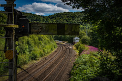 station to station (Phil-Gregory) Tags: railway tracks nikon d7200 toki sigma18250macro wideangle signal station colour national nature nationalpark naturalphotography naturalworld natural countryside naturephotography peakdistict scenicsnotjustlandscapes landscapes light