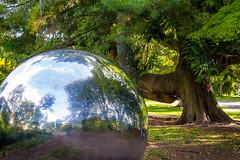 Ireland - Cork - Fitzgerald Park (Marcial Bernabeu) Tags: marcial bernabeu bernabéu ireland irlanda cork fitzgerald park parque tree arbol árbol ball bola esfera sphere metallic metálica metalica marc