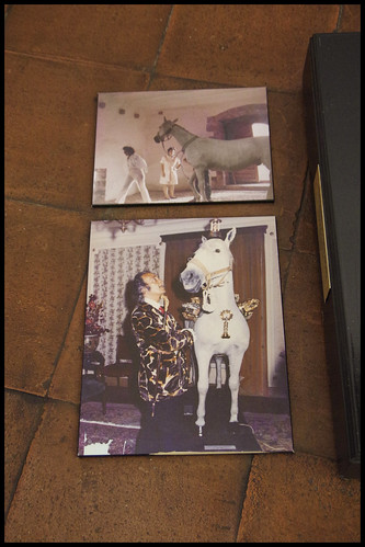 Casa Museu Castell Gala Dalí-Púbol- 0 Planta baixa (18)