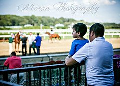 (EASY GOER) Tags: belmontpark horseracing father son horse racing sports equine thoroughbred thoroughbreds races horses canon 5dmarkiii