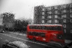 Bus Londra (niclo donà) Tags: londra bus pioggia london ruby5