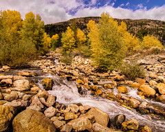autumn brook-1