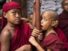 The novices monks (Gabriele Rodriquez 3,5 millions thanks) Tags: gabrielerodriquez fuji fujigfx50s myanmar travel people peopleoftheworld children