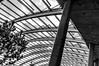 DSC_9372 (durr-architect) Tags: norman foster design glasshouse national botanic garden wales panels glass steel structural ribs flowers arch water pond trees modern architecture