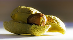 A peanut (kunstschieter) Tags: stayinghealthy macro peanut