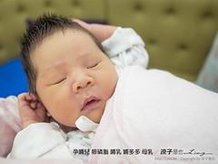孕哺兒 卵磷脂 哺乳 哺多多 母乳 2 (slan0218) Tags: 孕哺兒 卵磷脂 哺乳 哺多多 母乳 2