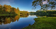 Eivindsvatnet, Haugesund - Norway (Vest der ute) Tags: xt2 norway rogaland haugesund djupadalen water waterscape landscape lake bluesky trees reflections mirror grass outdoor serene summer sunlight fav25 fav200