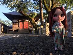 Evening light in Motokaji......