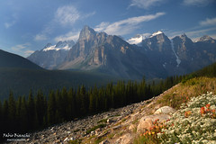 Montagne Rocciose Canadesi (Fabio Bianchi 83) Tags: rockies canada montagnerocciose alberta banff parconazionaledibanff banffnationalpark mountain hiking escursionismo