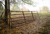 Old farm gate - Anderson S.C. (DT's Photo Site - Anderson S.C.) Tags: canon 6d 24105mml lens andersonsc old steel metal iron farm gate pasture rustic autumn fall tree foliage america usa vanishing southern landscape rural southernlife