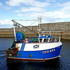 Flourish (calzer) Tags: sea august wednesday wall harbour moray scotland today lossiemouth trawler boat fishing 253 ins flourish