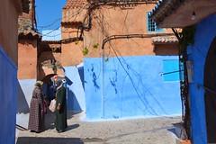 Potins -  gossip (Olivier Simard Photographie) Tags: maroc morocco chefchaouen chefchaouèn rif massifdurif médina medina bleu blue azul achawen chaouen الشاون شفشاون ⵜⵛⴻⴼⵜⵛⴰⵡⴻⵏ chat cat gato escalier stairs lumière light soleil matin morning marocaine rifmountain sebbanine afriquedunord maghreb berbère berber alley burnous traditionalclothing redhead intangibleculturalheritageofhumanitybyunesco bluerinsed andalusian ruelle vêtementtraditionnel patrimoineculturelimmatérieldel'humanitédelunesco andalou africa northafrica femme djellaba foulard woman scarf sun scénederue candidshot ombreetlumière shadowandlignt