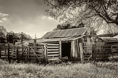 Stock Barn