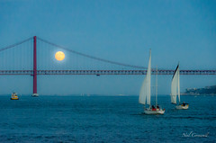 Evening Sail in Lisbon (Neil Cornwall) Tags: 2016 celebritycruises europe lisbon mediteraneancruise october ponte25deabril portugal silhoetteship