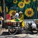 Fruitseller.   Ho Chi Minh