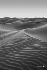 Lost beyond Dunes (hisalman) Tags: dunes desert dubai abudhabi blackwhite