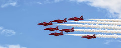 647A2584  THE REDS !!!!!!!!!!!!!!!! & BLUE .............. (david.edwards71(dave)) Tags: