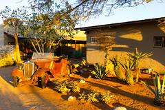 P1020893 (Seb_Jan) Tags: namibie namibia afrique africa afrika summer 2017 road trip roadtrip travel adventure holiday nature explore lumix wildlife safari picoftheday photooftheday dune desert naukluft solitaire