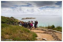 Ilhas Ciés > Galiza > Espanha (l.bragado) Tags: ilhas ciés espanha vigo galiza paraíso natureza únicas belas luizb