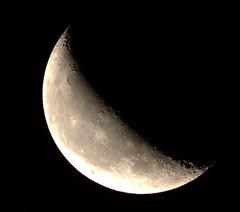 _MG_1016.CR2 (jalexartis) Tags: moon waning waningmoon waning419 dark afterdark night nightphotography nightshots lighting canonef400mmf56lusmlens canonextenderef2xiii 800mm 400mmx2