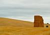 pacasmendioroz (nuboso) Tags: pacas trigo campo paja