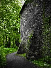 Vanitas (Karol Kuchcinski) Tags: czocha zamek castle bricks forest grass green black monochromatic olympus e620 colors vanishing vanitas