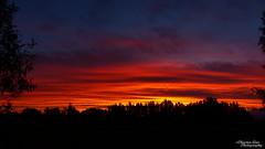 P1390468 (Christen Ann Photography) Tags: 2016 carterton christmasholidays december2016 landscape nature newzealand sun sunset wairarapa