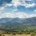 Notia Field Panorama