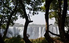Zimbabwe - Cataratas Victoria (eduiturri) Tags: sudáfrica cataratasvictoria zambia zimbabwe