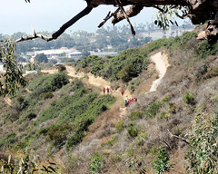 016 Santa Ana JROTC At The Switchback Control (saschmitz_earthlink_net) Tags: 2017 california orienteering laoc losangelesorienteeringclub venturacounty ventura