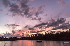 Sunset by Lost Lagoon, Stanley Park (jennchanphotography) Tags: sunset lostlagoon stanleypark park nature sky colours jennchanphotography vancouver downtown landscape