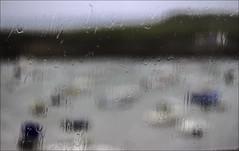 Pluie, pluie, pluie (076/365)