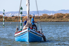 Sailor's work (JOAO DE BARROS) Tags: joão barros boat nautical maritime