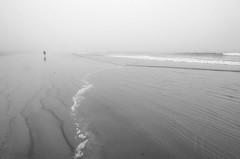 (amy20079) Tags: nikond5100 newengland fog beach ocean sea seascape maine atmospheric moody waves patterns blackwhite lines leadinglines
