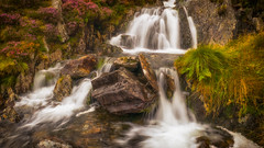 Never ending (L A H Photography) Tags: water flow waterfall motion longexposure snowdonia wales colourful nature outdooor foliage contrast orange uk g80 lumixg80 summer beauty landscape river stream