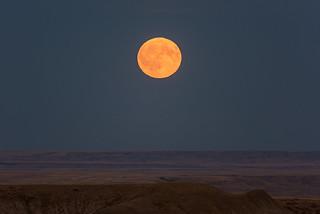 1709_0476 Moonrise