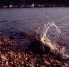 At the seaside (elkarrde) Tags: mediumformat squareformat 6x6 6×6 tlr twinlensreflex camera:brand=yashica camera:model=mat124g camera:format=6x6 camera:type=tlr lens:brand=yashica lens:model=yashinonf80mm135 lens:format=6x6 lens:focallength=80mm lens:maxaperture=35 film:format=120 camera:format=120 lens:format=120 summer 2013 sea seaside lakeside šibenik bilice sky croatia adriatic adriaticsea summer2013 august august2013 šibenikcounty adriaticcoast square yashica yashicamat124g yashinon80mm135 yashinon yashinon135f80mm yashicamat film filmphotography analogue analog analogphotography analoguephotography 8035 lens:brand=yashinon fujichromeastia100f fujichrome fujifilm film:brand=fujichrome astia fujirap100f rap100f filmisnotdead filmisalive film:process=e6 film:brand=fujifilm film:model=astia100f vuescan canoscan canoncanoscan8800f canoscan8800f 8800f scanner:brand=canon scanner:model=canoscan8800f twop