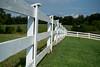White fence (gdajewski) Tags: d750 dajewski nikond750 pa ryerssfarm gdajewski fence whitefence nikkor50mmf18d