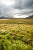 Connemara, Ireland (Antoine NOEL) Tags: irish landscape shade green cloud sky nuage nuance de vert herbe landes terres sony a7 voigtlander 20 color skopar