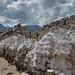 Shey, Ladakh, Inde