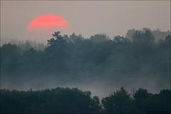 Sunrise at Petrie Island (Daniel Cadieux) Tags: sunrise fog foggy mist misty ottawa petrieisland earlymorning forest trees redsun