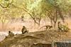 SENEGAL -  345 (Giulio Mazzini) Tags: adventure africa avventure black desert face free holiday landscape libertà portrait river senegal sun teranga world