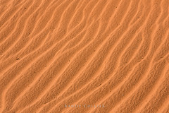 z020 2x (RandyCollier) Tags: 1x2 2x gallery sand southwest coralpinksanddunes el2 z020 zen zenprint