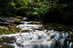 Flat Laurel Creek (joehoeper) Tags: northcarolina blueridgemountains 828 avl pisgahnationalforest pisgah mountainstoseatrail hike appalachianmountains