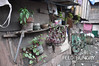 FTHAUST_004141 (FTHAust) Tags: philippines fthaust happyland lesea