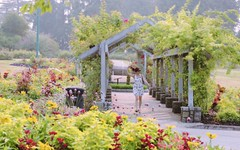 Good morning Vancouver - Stanley Park (yuanxizhou) Tags: amazing beautiful colors britishcolumbia vancouver stanley morning field landscape portrait flowerphotography flower park garden