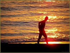 Le marcheur de l'aube (bleumarie) Tags: été été2017 littoralméditerranéen mariebousquet mididelafrance suddelafrance vacancesàlamer bleumarie côte catalogne fuji languedocroussillon littoral méditerranée mer midi pyrénéesorientales roussillon saintemarie saintemarielamer sud vacances levant leverdesoleil soleillevant homme silhouette marcher marcheur or doré couleur reflet vague tôt aurore matin