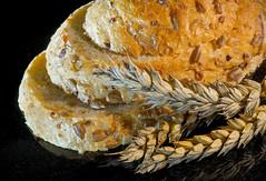 Using your loaf (grbush) Tags: macromondays bread food wheat macro closeup sonya7 tamronaf90f28disp baking harvest golden seeds